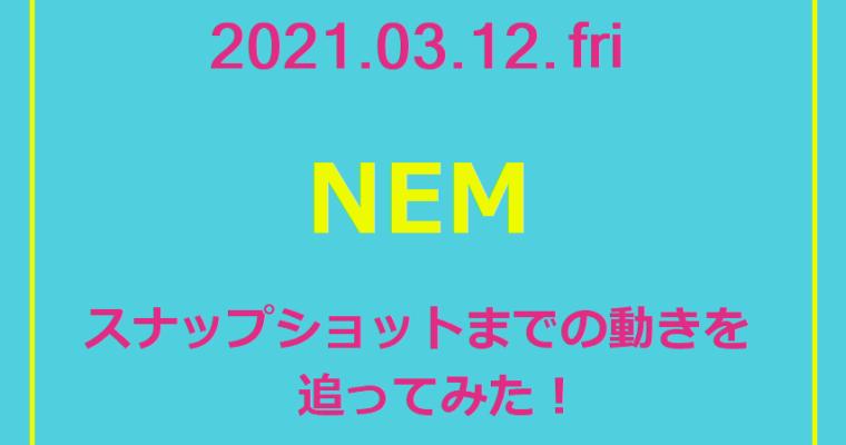 〈実録〉NEMスナップショットへの軌跡_※3/12更新